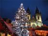 встретить-рождество-в-праге,-карловы,-вары,-пражский-кремль.-карлов-мост,-влтава,-еврейский-квартал
